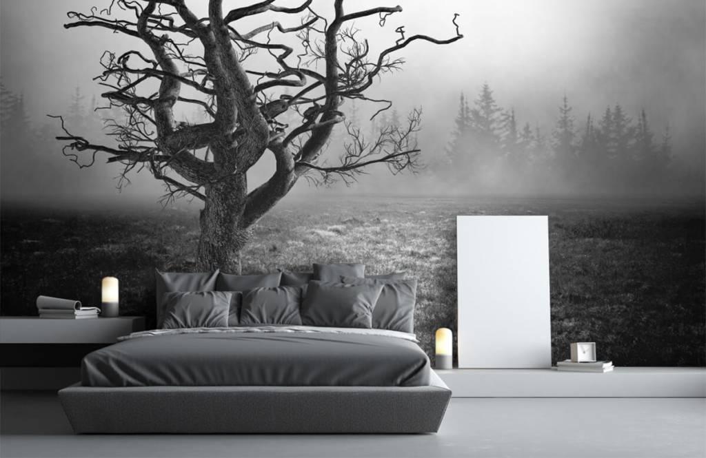 Papier peint noir et blanc - Arbre élégant - Chambre à coucher 3