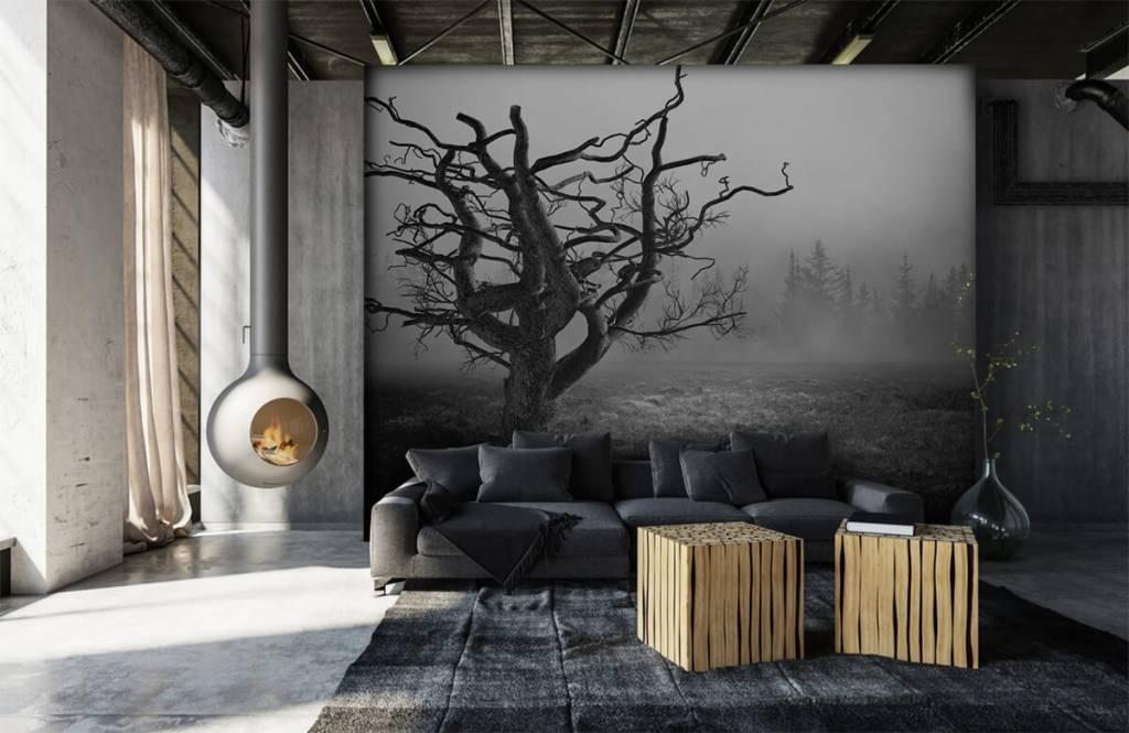 Papier peint noir et blanc - Arbre élégant - Chambre à coucher 6