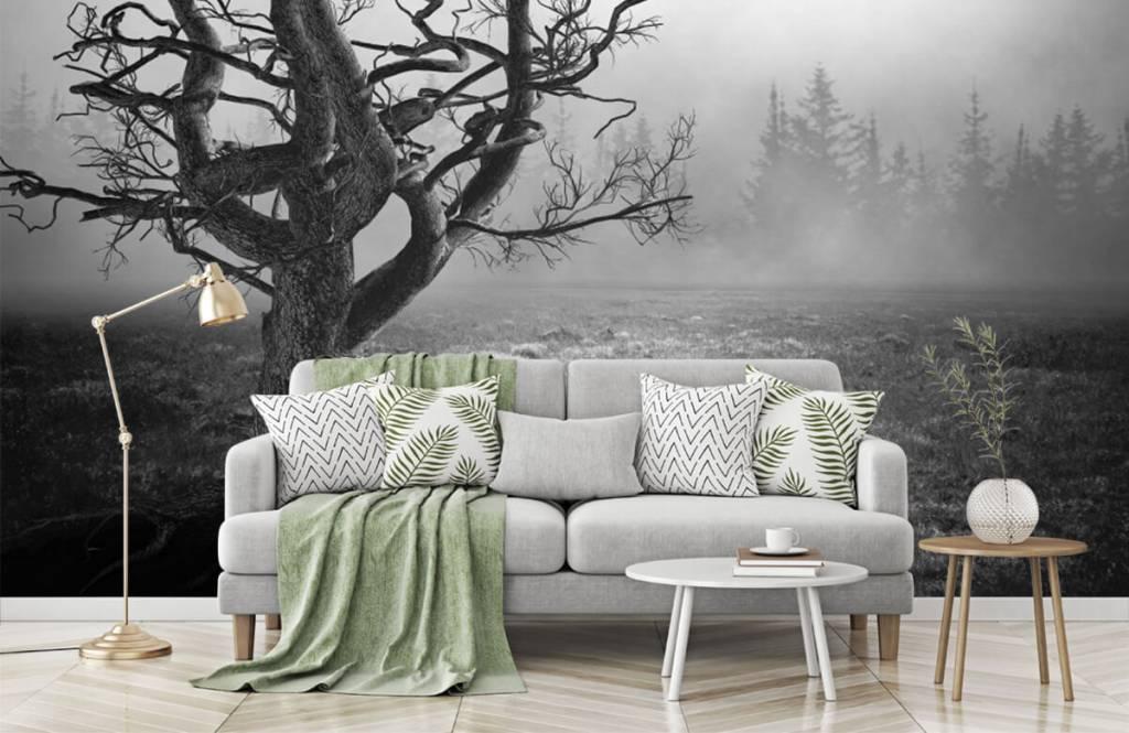 Papier peint noir et blanc - Arbre élégant - Chambre à coucher 7