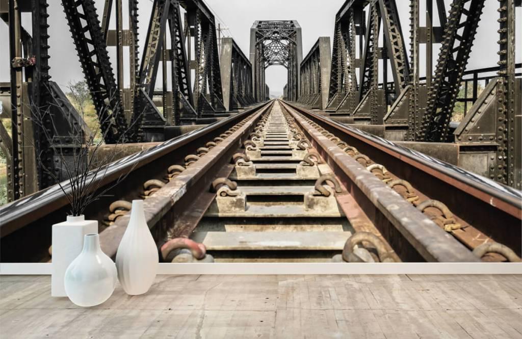 Éléments - Pont ferroviaire métallique - Entrepôt 8