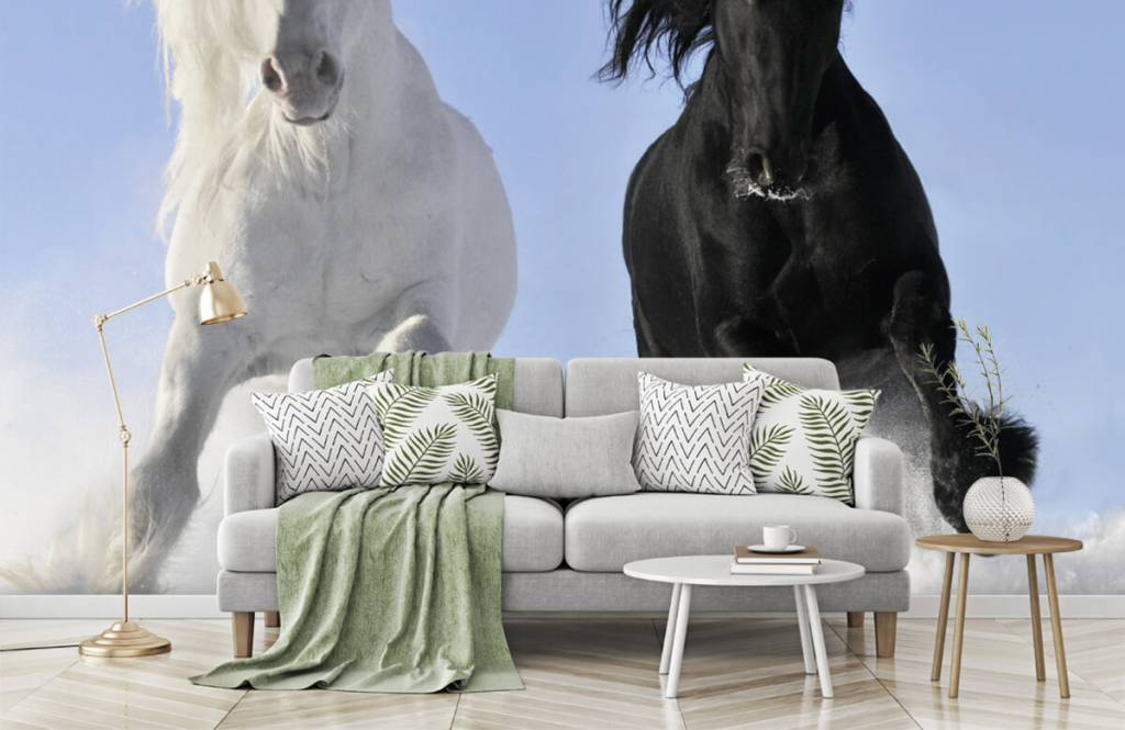 Chevaux - Cheval blanc et noir - Chambre d'adolescent 8