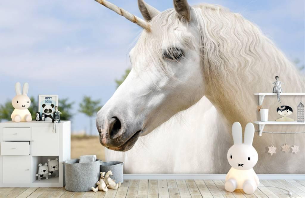 Chevaux - Licorne blanche - Chambre d'enfants 1
