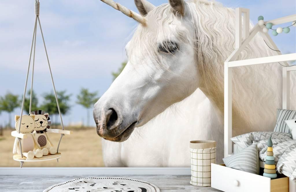 Chevaux - Licorne blanche - Chambre d'enfants 4