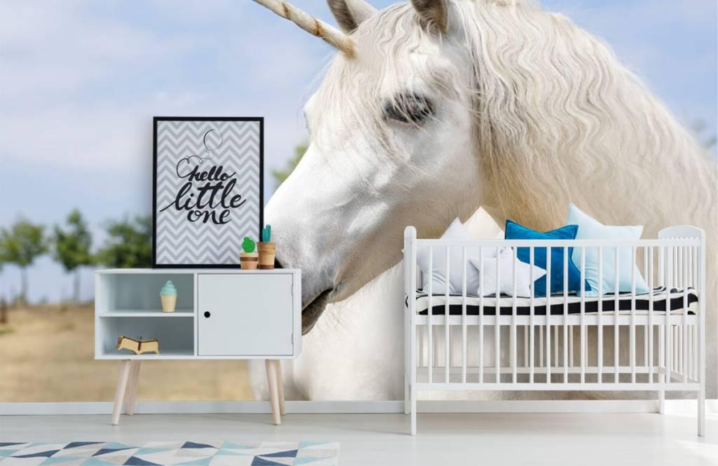 Chevaux - Licorne blanche - Chambre d'enfants 6