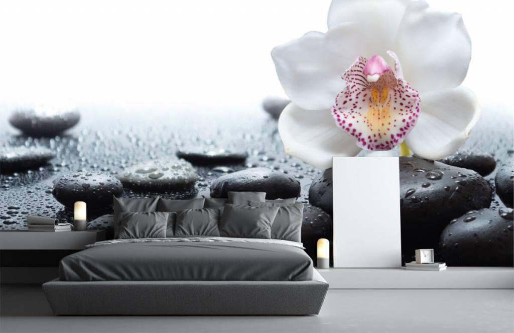 Autre - Orchidée blanche - Réception 3