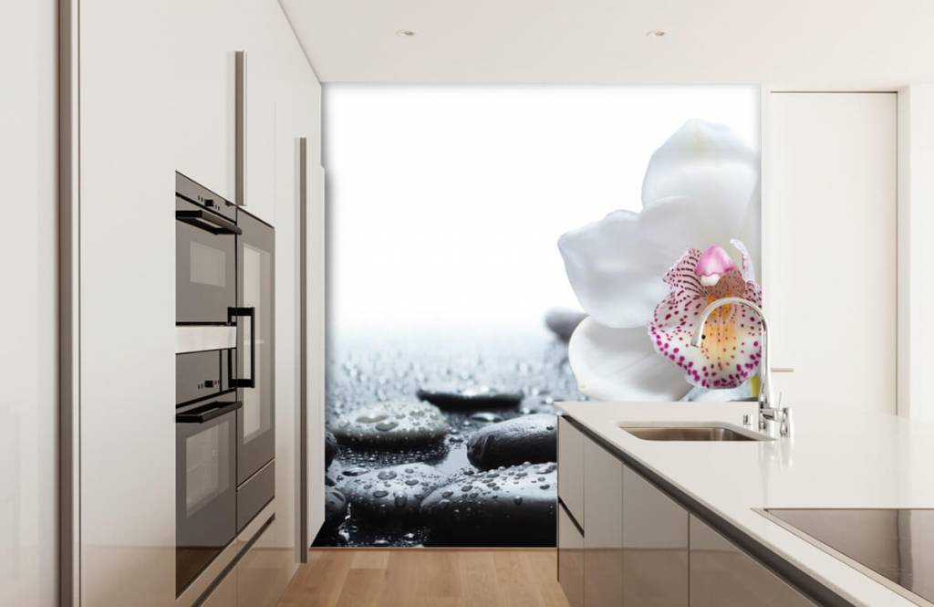 Autre - Orchidée blanche - Réception 4