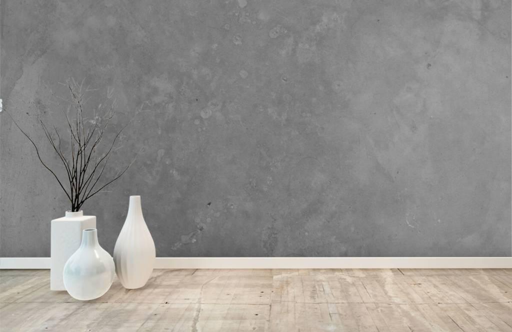 Papier peint aspect béton - Béton gris - Salle de conférence 8