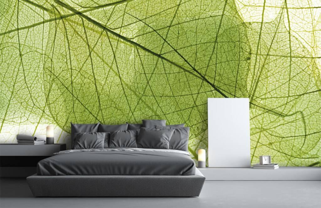 Feuilles - Feuilles vertes - Chambre à coucher 1