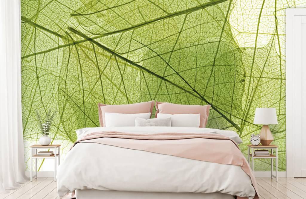 Feuilles - Feuilles vertes - Chambre à coucher 2