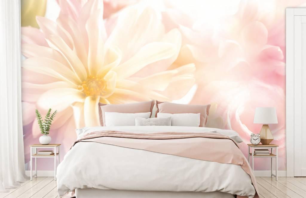 Champs fleuris - Fleurs claires - Chambre à coucher 1
