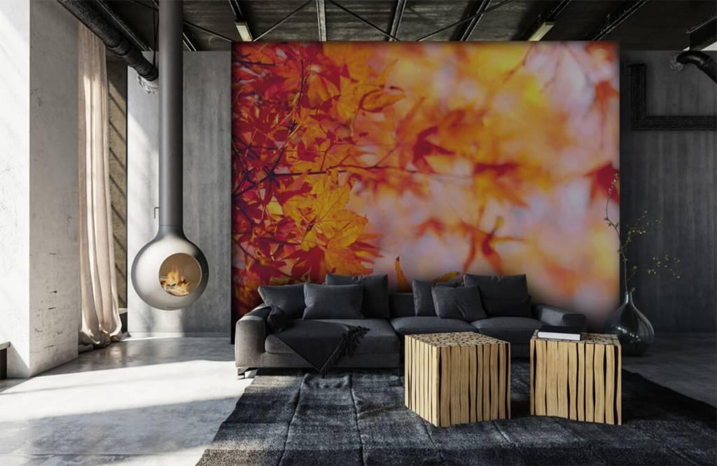 Feuilles - Feuilles d'automne - Chambre à coucher 6