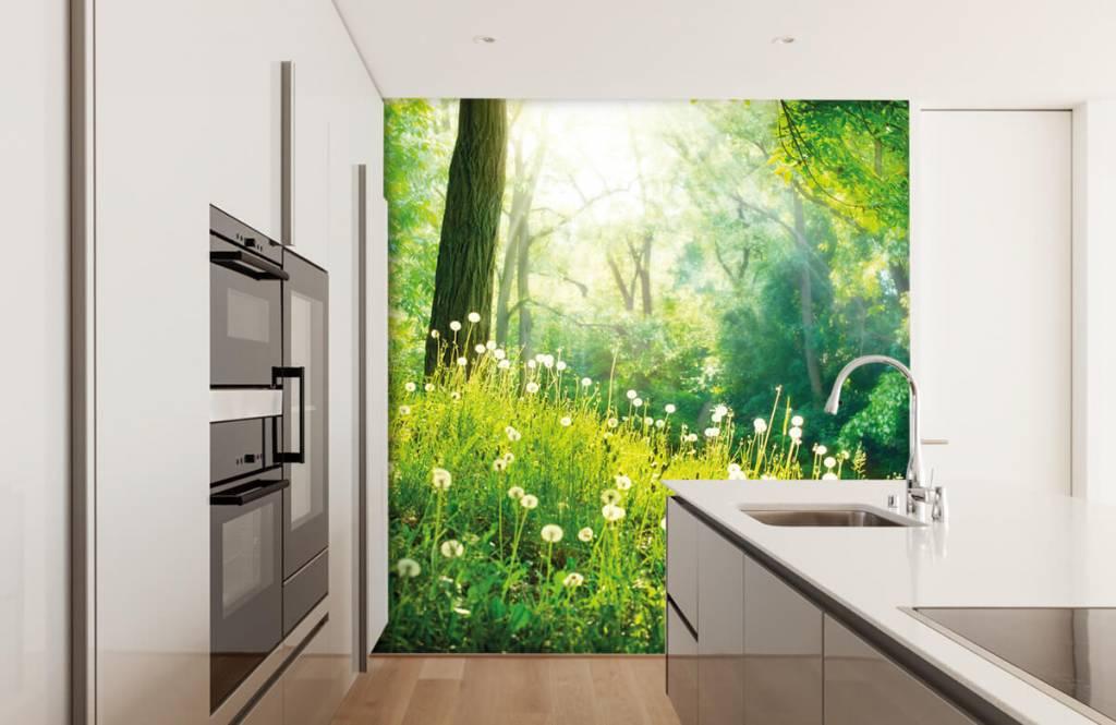 Papier peint de la forêt - Pissenlits - Chambre à coucher 3