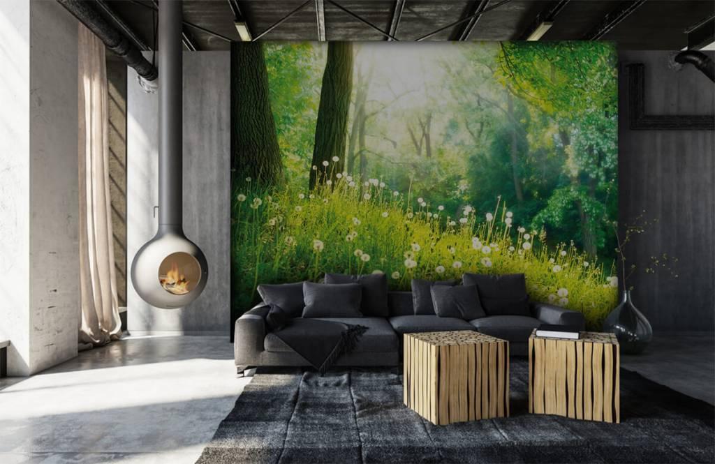 Papier peint de la forêt - Pissenlits - Chambre à coucher 6