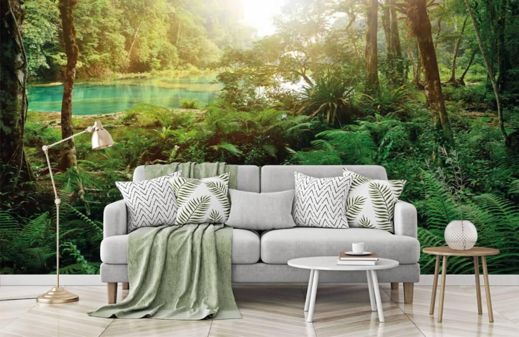 Papier peint de la forêt - Lac dans la jungle - Chambre à coucher 1