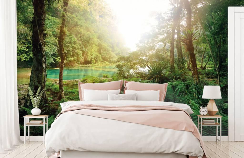 Papier peint de la forêt - Lac dans la jungle - Chambre à coucher 2