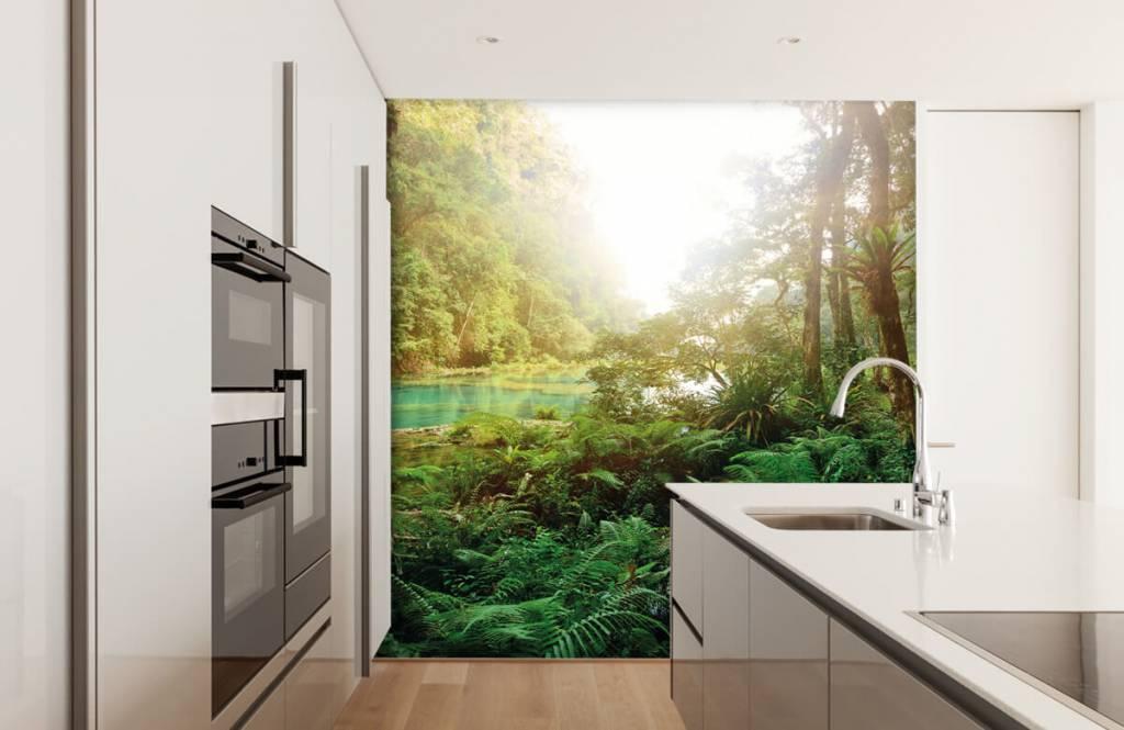 Papier peint de la forêt - Lac dans la jungle - Chambre à coucher 4