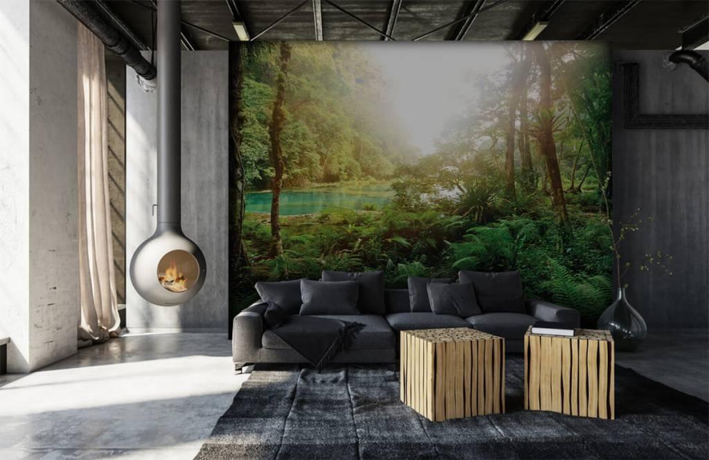 Papier peint de la forêt - Lac dans la jungle - Chambre à coucher 7