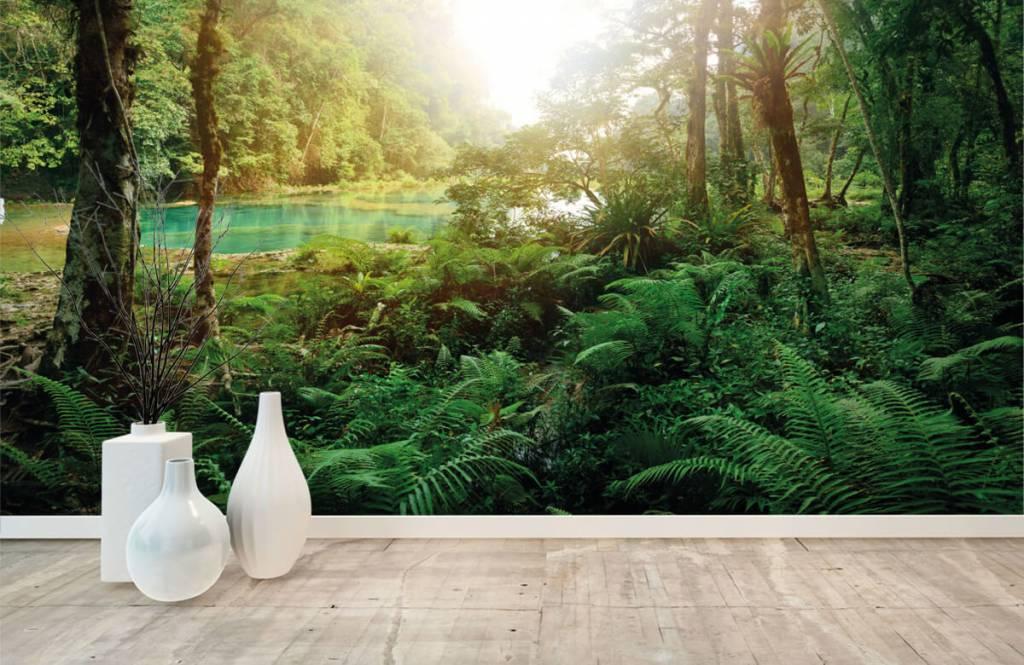 Papier peint de la forêt - Lac dans la jungle - Chambre à coucher 8