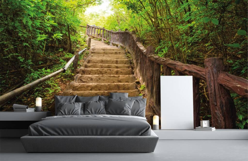 Papier peint de la forêt - Escalier en forêt - Chambre à coucher 3