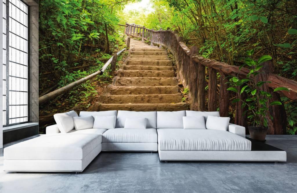 Papier peint de la forêt - Escalier en forêt - Chambre à coucher 5