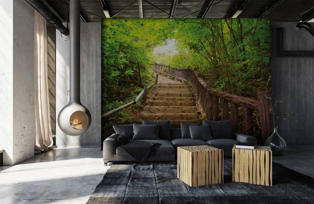 Papier peint de la forêt - Escalier en forêt - Chambre à coucher 6