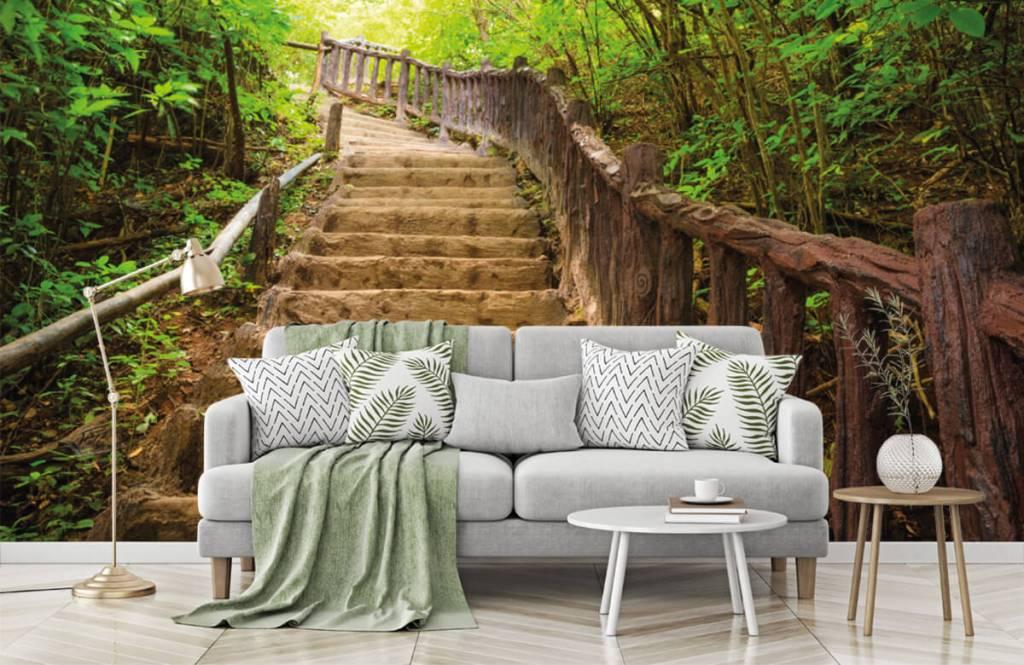 Papier peint de la forêt - Escalier en forêt - Chambre à coucher 7