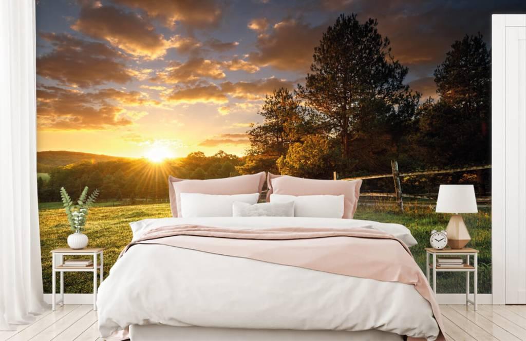 Papier peint Paysage - Pâturage au coucher du soleil - Chambre à coucher 2