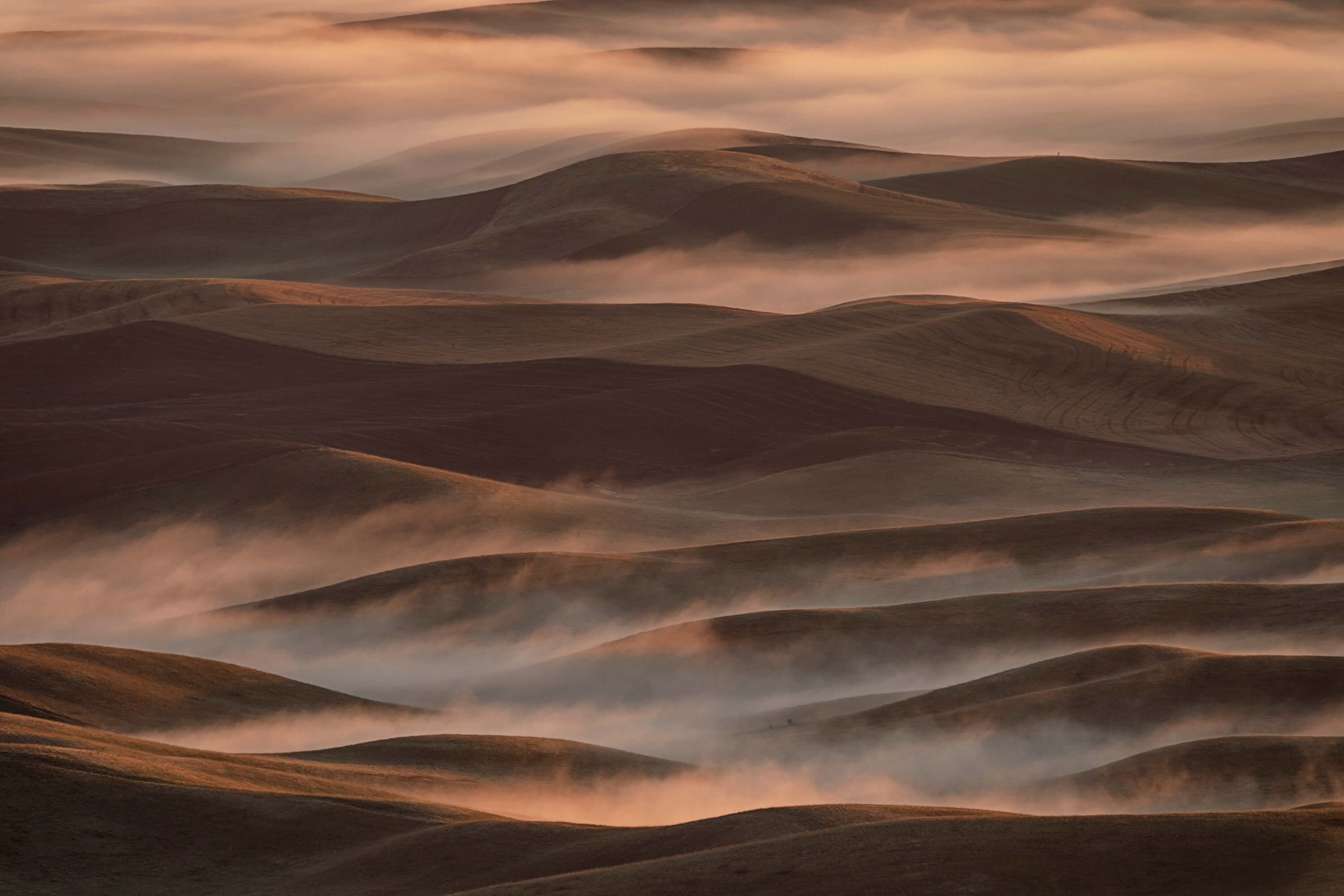 Landscape Early Spring Morning at Palouse
