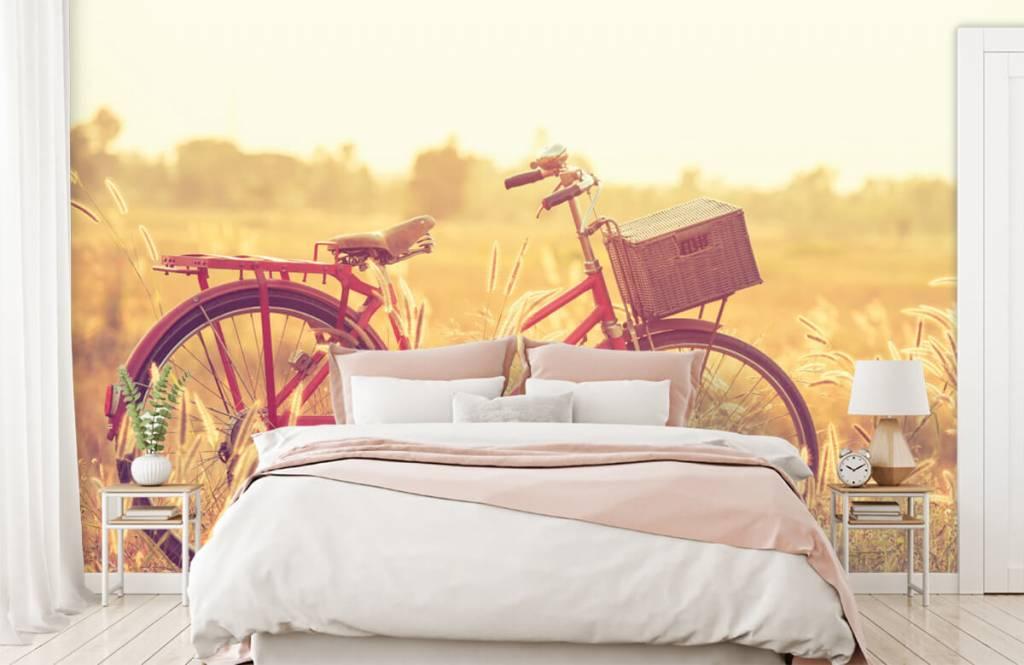Papier peint Paysage - Vélo d'époque - Chambre à coucher 1