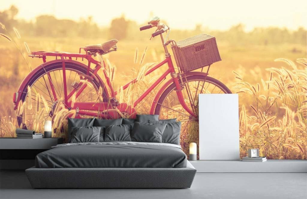 Papier peint Paysage - Vélo d'époque - Chambre à coucher 2