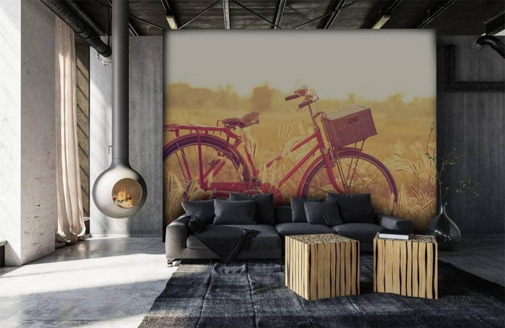 Papier peint Paysage - Vélo d'époque - Chambre à coucher 6