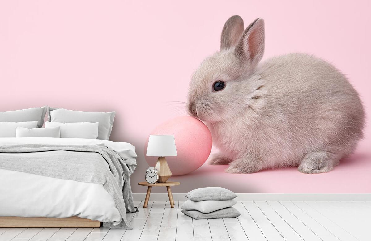 Wallpaper Lapin avec un œuf 9
