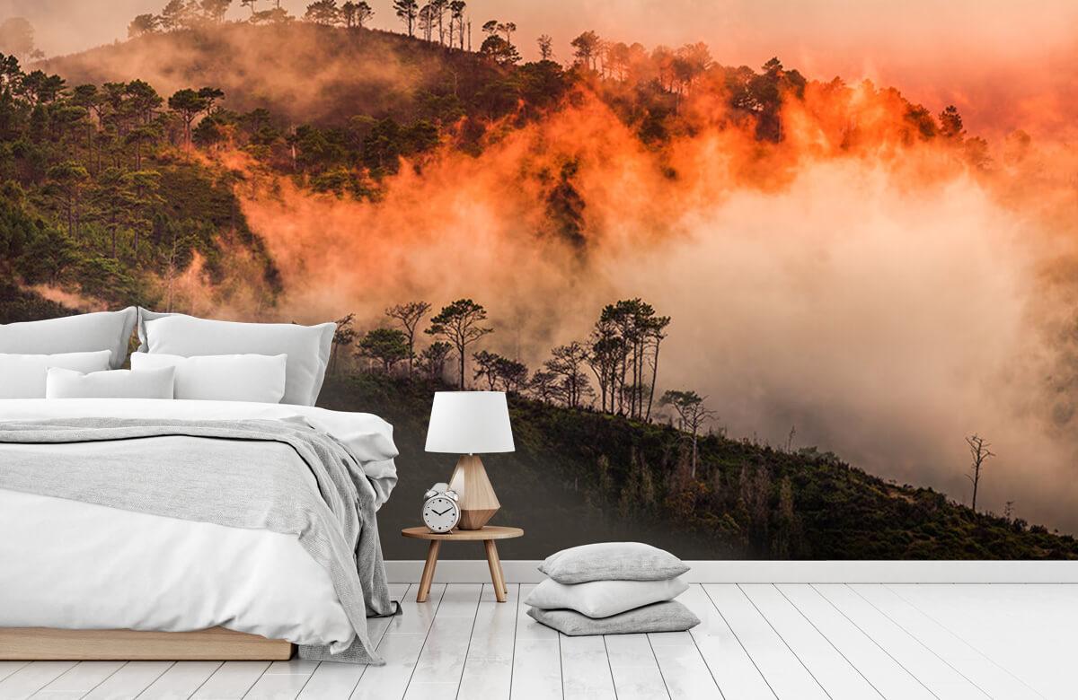 Wildfire 5