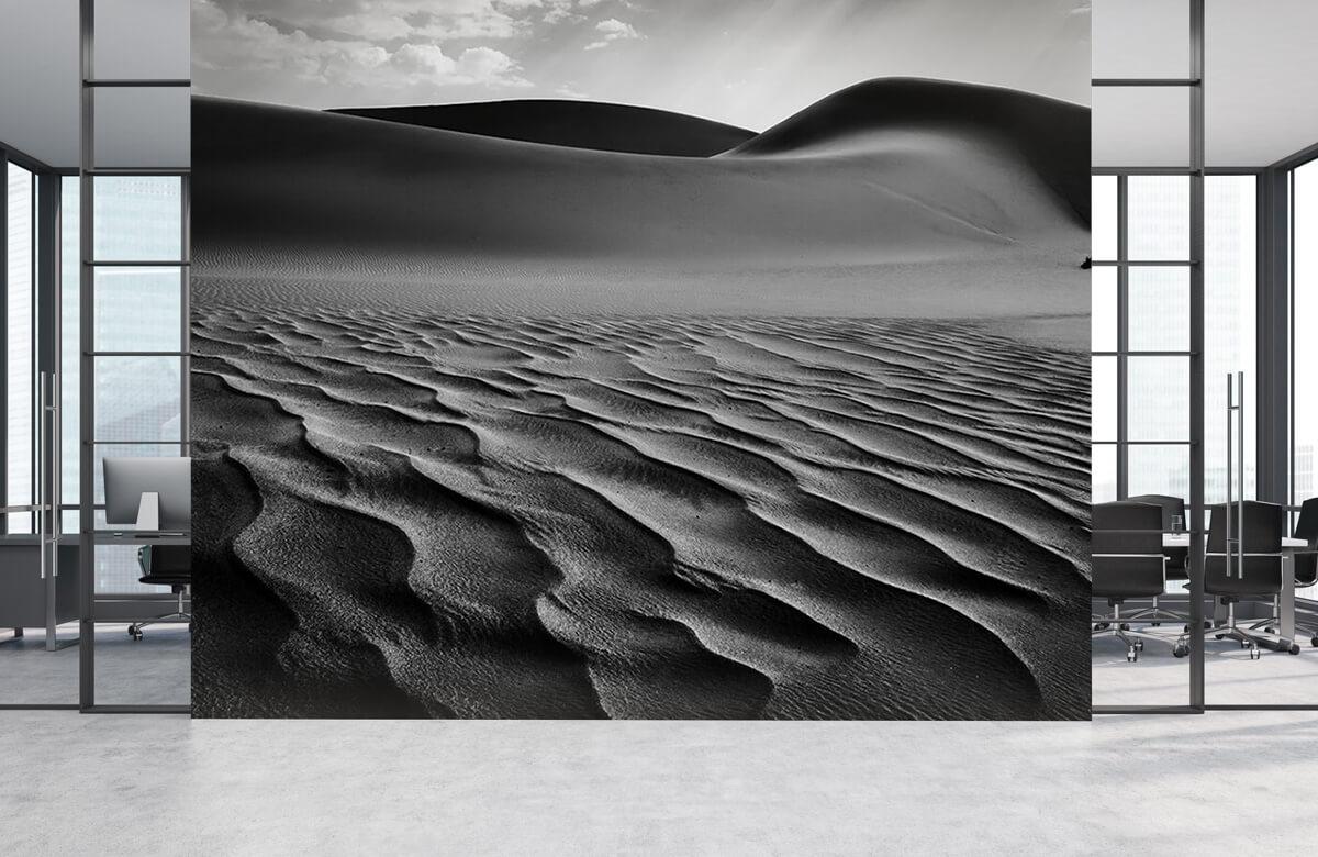 The Living Dunes, Namibia I 5