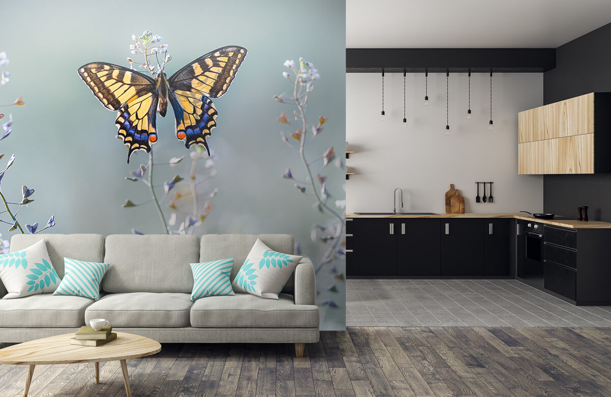 Macro Swallowtail beauty 8