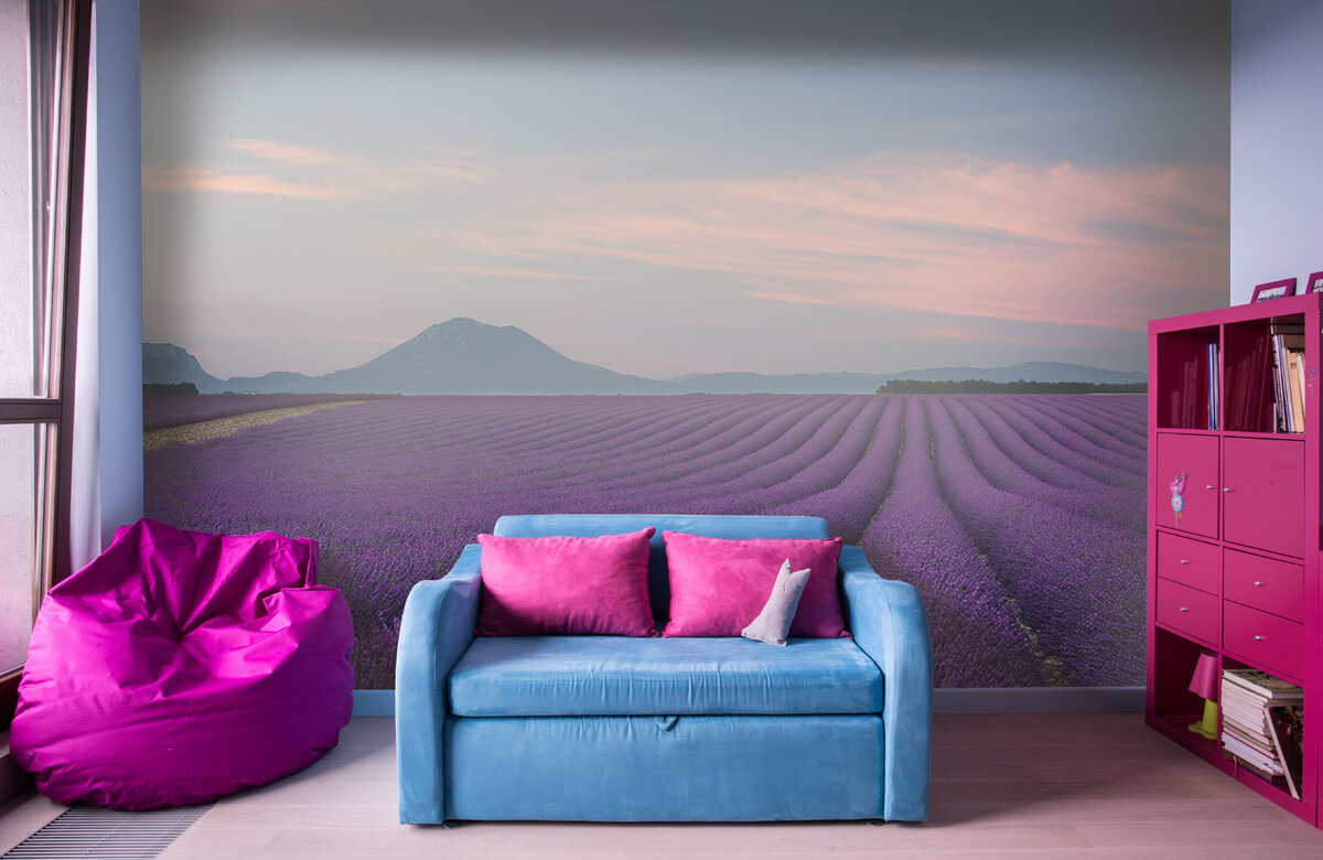 Landscape Lavender field 2
