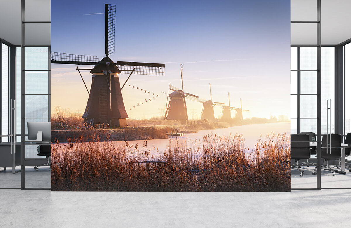 Landscape Kinderdijk 4 6