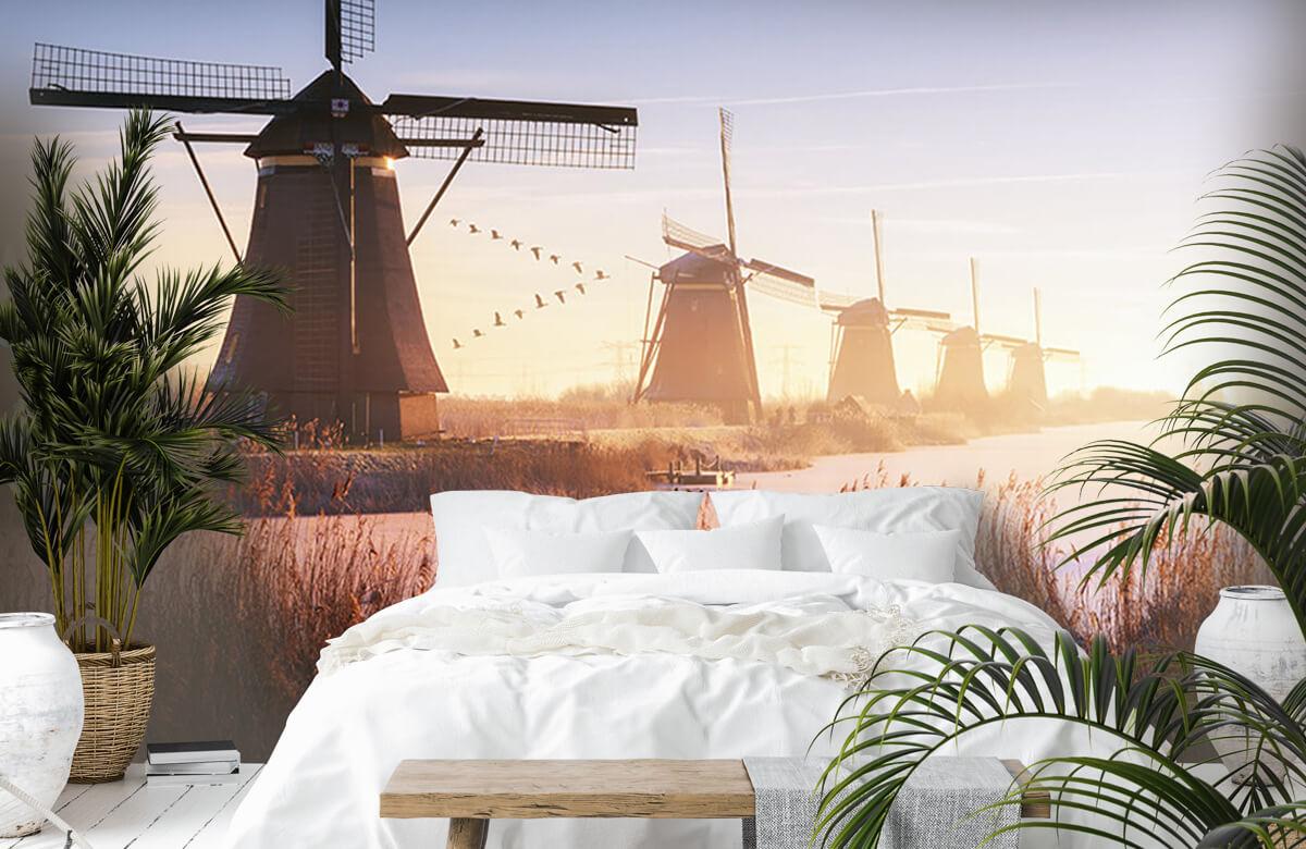 Landscape Kinderdijk 4 7