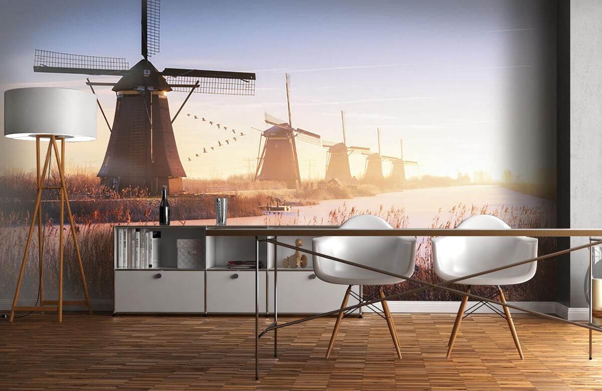 Landscape Kinderdijk 4 1