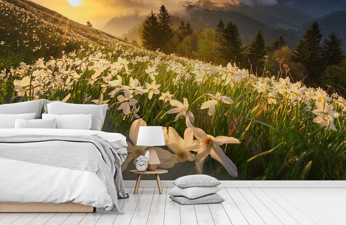 Landscape White carpet 9