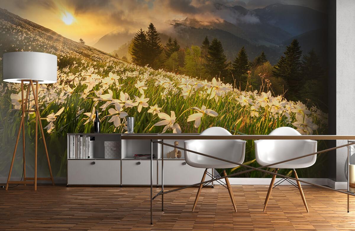 Landscape White carpet 1