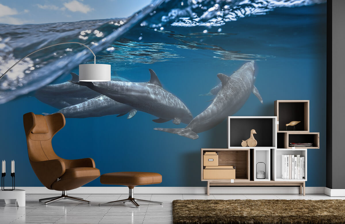 Underwater Dolphins 7