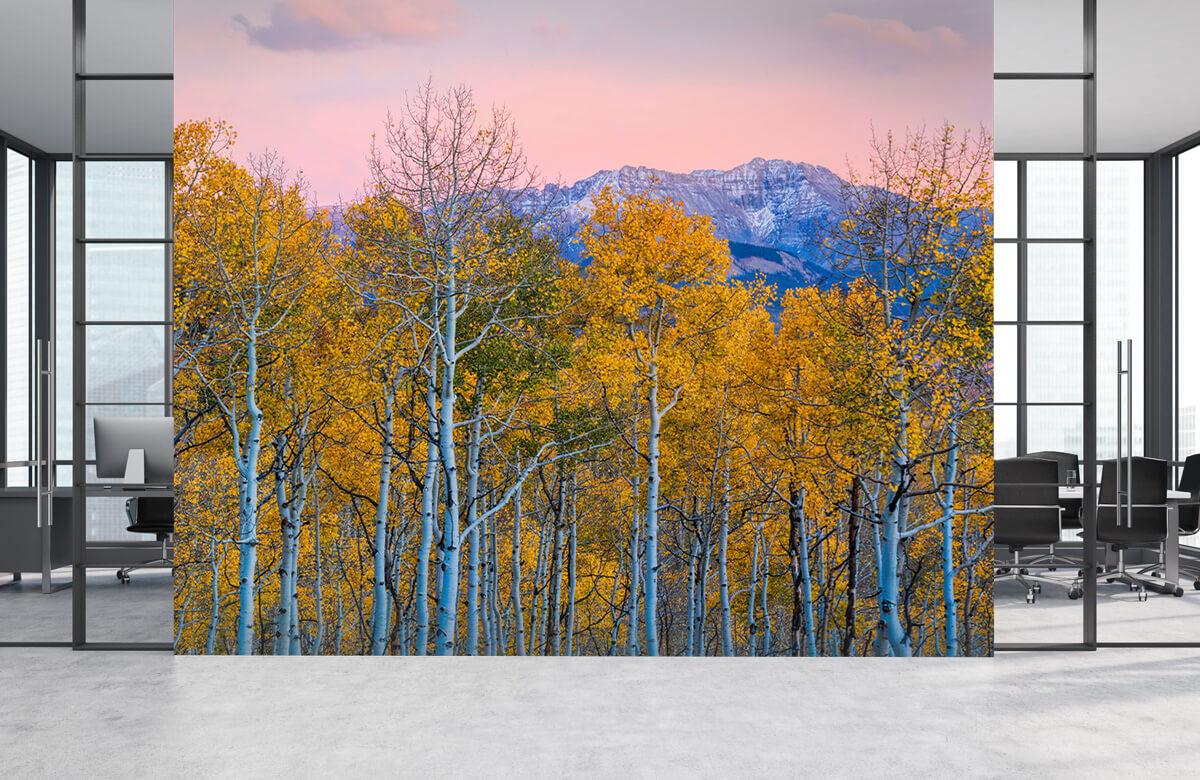 Landscape Autumn Delight 6