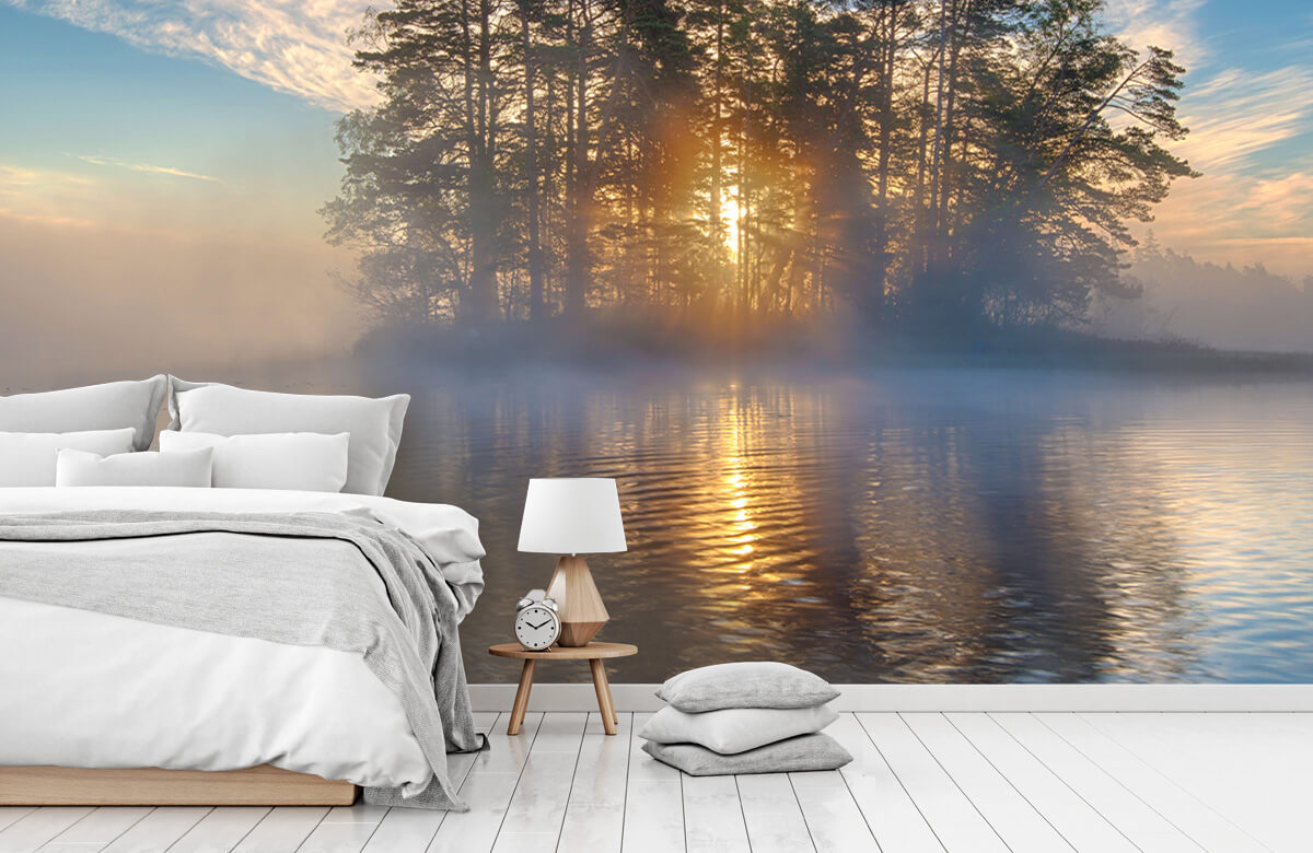 Landscape Morning light 11