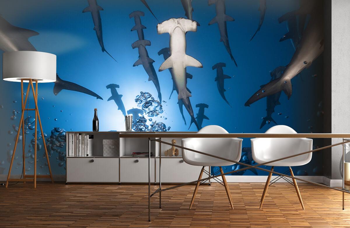 Underwater Hammerhead Shark 5