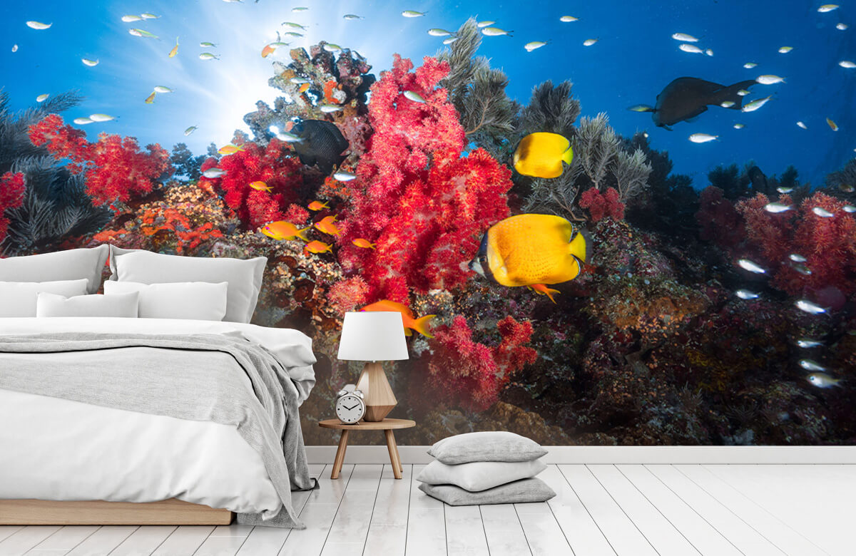 Underwater Reef life 10