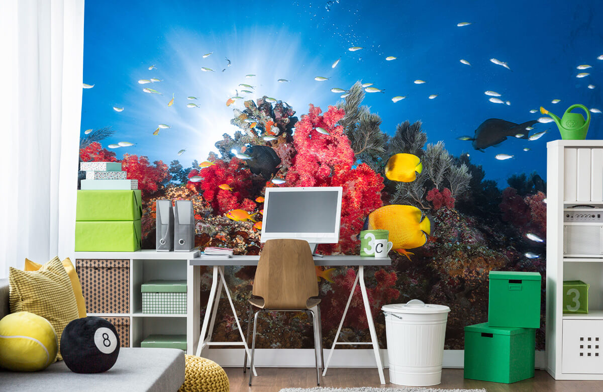 Underwater Reef life 11