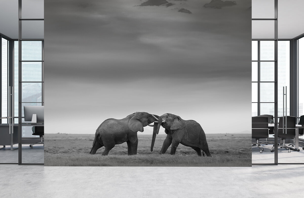 Wildlife Mock Fight 4