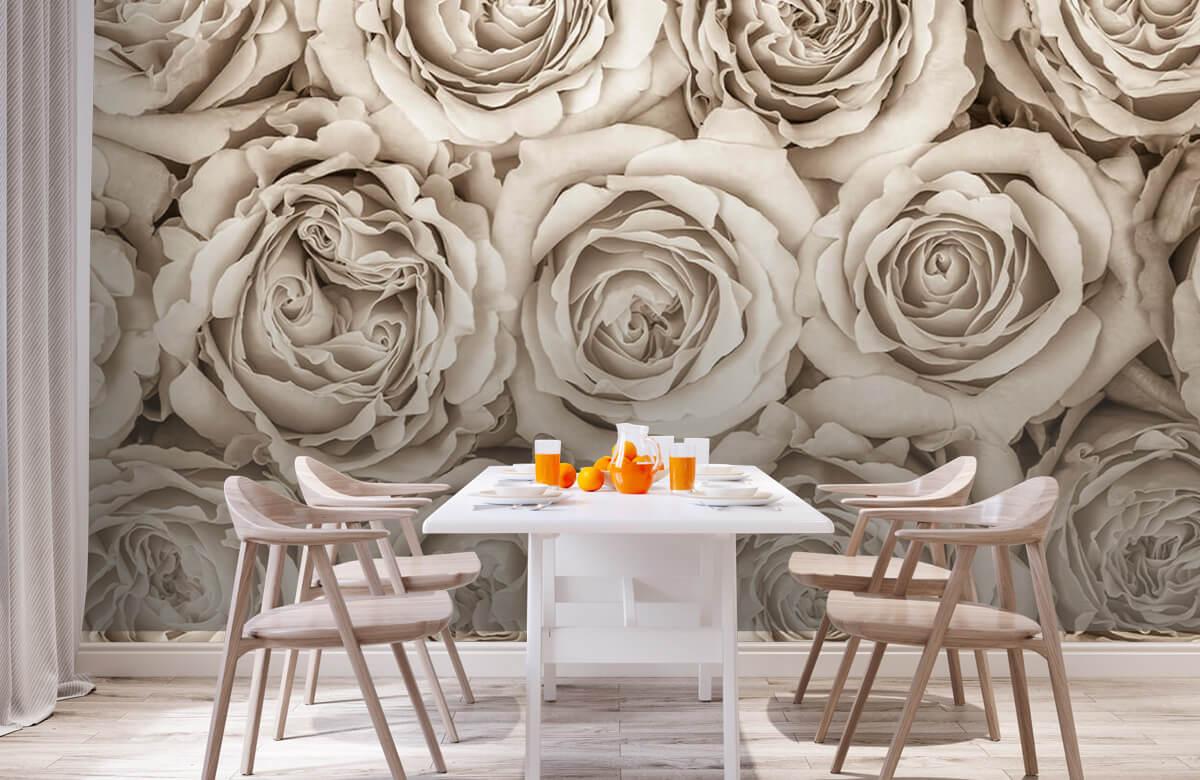 Fond d'écran de roses 3