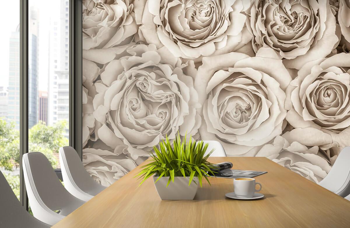 Fond d'écran de roses 5